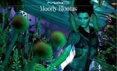 М.А.С Moody Blooms