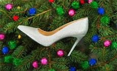 Новогодняя коллекция обуви и аксессуаров «Эконика»