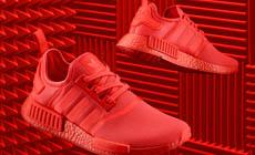 Adidas Originals ������������ ����� ��������� NMD_XR1